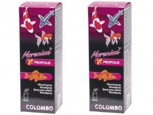 Colombo Morenicol  Propolis Spray
