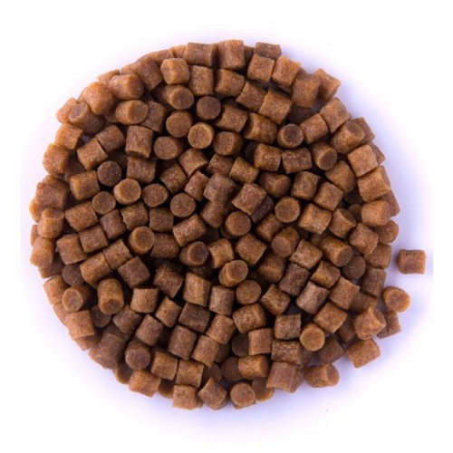 COPPENS KOI FOOD PREMIUM COARSE (potápivé) 6 MM 20 Kg