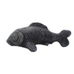 Ryba střední
