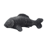 Ryba větší