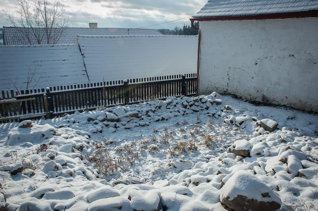 Kořenová čistírna v zimě